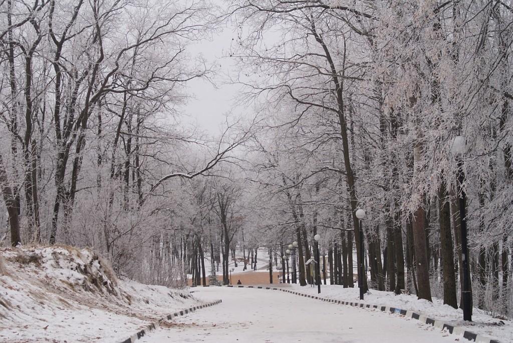Парк маршалково, декабрь 2014